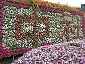 中社花園:CIMG0035.JPG