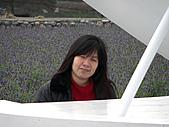 中社花園:CIMG0067.JPG