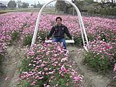中社花園:CIMG0104.JPG