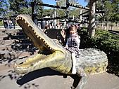 2010 六福村:Emma還蠻喜歡這隻鱷魚的。