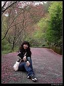 2009-0221 南庄碧絡角+神仙谷:IMGP9883.jpg