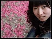 2009-0221 南庄碧絡角+神仙谷:IMGP9889.jpg