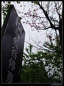 2009-0221 南庄碧絡角+神仙谷:IMGP9968.jpg
