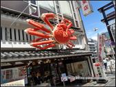 2017年八月日本京阪神旅遊:2017年日本京阪神遊-道頓堀 (17).jpg