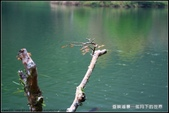 舊地重遊:垂映湖景隨拍_8.jpg