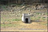 福爾摩莎:石門水庫裡的百年土地公(附指示圖)_14.JPG