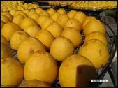語眾不同:柿子.jpg