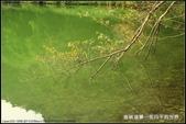 舊地重遊:垂映湖景隨拍_4.jpg