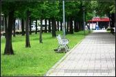 隨心所遇 :綠意盎然的玉山公園落羽松 (27).jpg