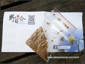 福爾摩莎:苗栗縣三義鄉野百合秘密花園 (60).jpg