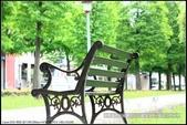 隨心所遇 :綠意盎然的玉山公園落羽松 (31).jpg