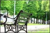 隨心所遇 :綠意盎然的玉山公園落羽松 (30).jpg