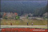 福爾摩莎:2014年拜訪明池_02.jpg