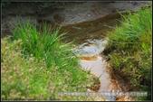 福爾摩莎:石門水庫裡的百年土地公(附指示圖)_05.JPG