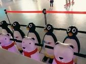 101冰雪奇緣嘉年華 106.12.21:8.溜冰場內的企鵝和北極熊.jpg
