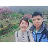 陽明山花季 107.3.3:相簿封面