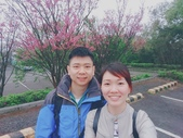 陽明山花季 107.3.3:2.jpg