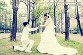 【婚紗攝影】 嫁給我吧!:1018067613.jpg