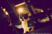愛上老宅咖啡館 【 台中 ‧ 胡同 】:1318114676.jpg