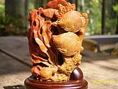 小葉收藏品:海底世界