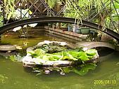 夢松園:池塘小橋