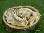 小葉收藏品:荷葉金魚