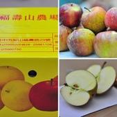 福壽山蜜蘋果開箱文:相簿封面