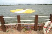 新屋地景藝術節-黃色小鴨:可憐的小鴨變成一攤 荷包蛋