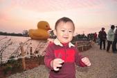 新屋地景藝術節-黃色小鴨: