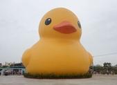 新屋地景藝術節-黃色小鴨:高雄來的黃色小鴨