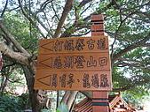 草嶺山/打鐵寮古道:IMG_2640.jpg