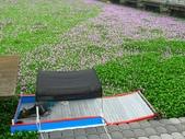 2018.04.28 十二寮休閒農園:IMG_4672_1.jpg