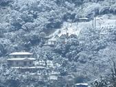 2016.01.24 三峽熊空賞雪:IMG_5989.JPG