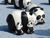 2014.10.10台中國家歌劇院-紙貓熊:IMG_0727.JPG
