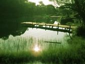 2018.02.19 新山夢湖:IMG_5547.JPG