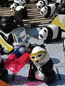 2014.10.10台中國家歌劇院-紙貓熊:IMG_0712.JPG
