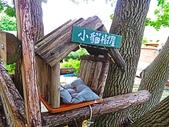 2018.08.28 龍騰斷橋&飛行樹屋:IMG_6847.JPG