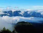 塔塔加雲海.東埔山.特富野古道:IMG_4337.JPG