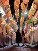 20200202普濟殿~鄭成功祖廟~廣行宮燈會:ice_2020-01-19-00-02-56-794.jpg