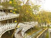 2017.04.01 竹崎公園:IMG_2218.JPG