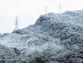 2016.01.24 三峽熊空賞雪:IMG_5962.JPG