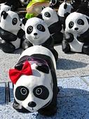 2014.10.10台中國家歌劇院-紙貓熊:IMG_0724.JPG