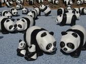 2014.10.10台中國家歌劇院-紙貓熊:IMG_0741.JPG