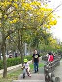 2017.03.18 廍子公園:IMG_1607.JPG
