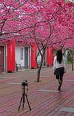 20200222三義櫻花渡假村~八甲茶園:ice_2020-02-22-19-22-54-492.jpg
