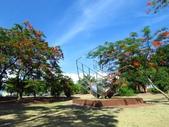 2016.05.29 麟洛公園-阿勃勒:IMG_4249.JPG