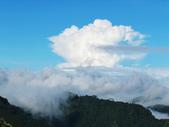 塔塔加雲海.東埔山.特富野古道:IMG_4362.JPG