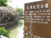 2018.03.31 大湖紀念公園-紫藤:IMG_2977.JPG