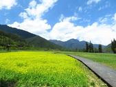 2017.04.08 武陵農場-紫藤:IMG_4107.jpg