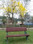 2017.03.18 廍子公園:IMG_1615.JPG